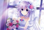 HDNRB3-Neptune Wedding