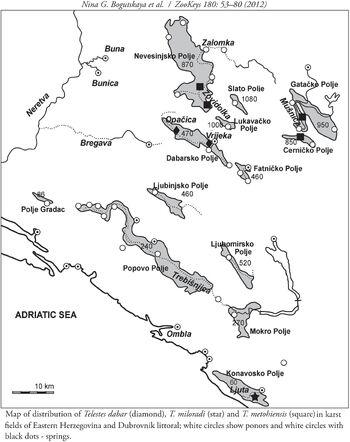 Gaovica (Telestes dabar i T. miloradi - ranije kao T. metohiensis) novi endemi, Nevesinjsko, Dabarsko i Cernicko Polje u BiH i Konavli-Ljuta u HR