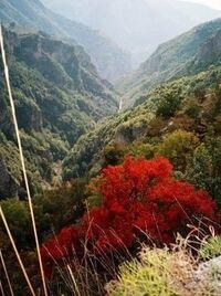 - - - boje u kanjonu