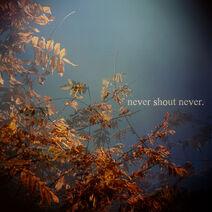 Carátula de Never Shout Never