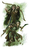 Fourth Edition Dungeons and Dragons Elves