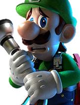 Luigi SSBI Portrait