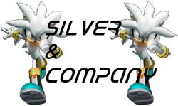 Silver & Company First Logo