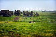 Altos de Golán