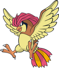 Pidgeotto (dream world)