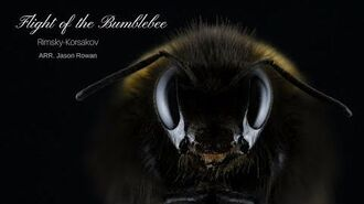 Flight Of The Bumblebee Techno Remix 2018 Rimsky Korsakov