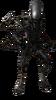 Xenomorfo SSSBX