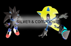 Silver & Company Second Logo