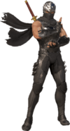 Ryu Hayabusa SSSBX