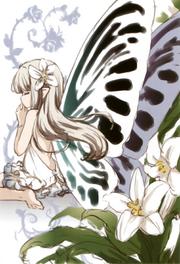 Fairies story