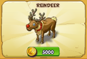 Reindeer2017