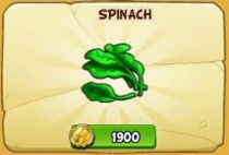 Spinach new