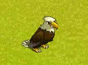 EagleReward