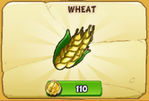 Wheat new