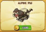 AlpinePig2018