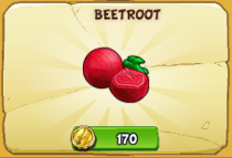 Beetroot new