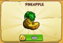 Pineapple new