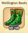 WellingtonBoots