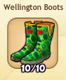 WellingtonBoots