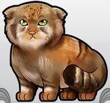 Palas Cat