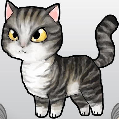 American Wirehair | Bread_Kittens Wiki | FANDOM powered by Wikia