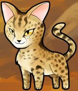 SavannahCat
