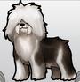 Oldenglishsheepdog
