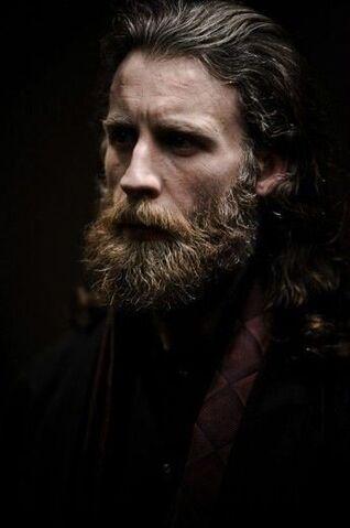 File:Ef50e370e01ea51ace940cf856a3b29f--epic-beard-man-beard.jpg