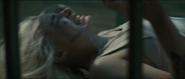 ZHarley Quinn' Trailer22