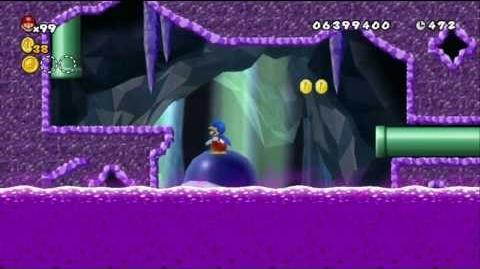 Newer Super Mario Bros Wii World D-A Carapace Catacomb