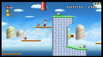 Newer Super Mario Bros. Wii - Unused Level 8