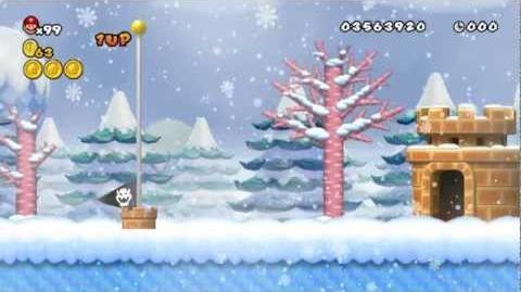 Newer Super Mario Bros Wii World 5-5 Snowfall Peak Star Coins & Secret Exit