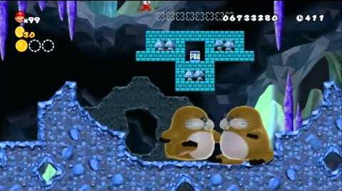 Newer Super Mario Bros Wii World 9-7 Navyblue Molemine