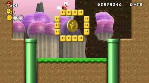 Newer Super Mario Bros Wii World 4-A Hilltop Town Star Coins