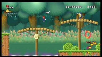 Newer Super Mario Bros. Wii - Unused Level 6
