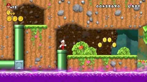 Newer Super Mario Bros Wii World 1-8 Switch Shift Grove Secret Exit
