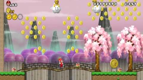 Newer Super Mario Bros Wii World 4-1 Bamboo Steppes Star Coins