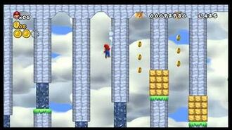 Newer Super Mario Bros. Wii - Unused Level 2