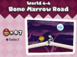 BoneMarrowRoad