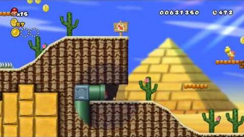 Newer Super Mario Bros Wii World 2-1 Cactus Cove Star Coins