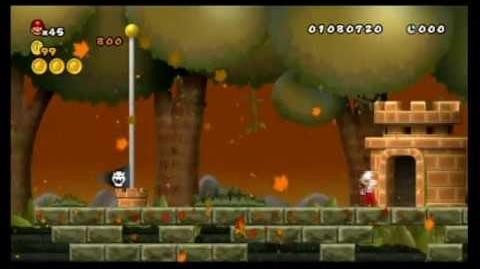 Newer Super Mario Bros. Wii 100% World A - Goldwood Forest