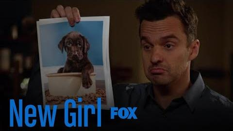 Jess Can't Say Mean Things About Cute Dogs Season 7 Ep. 6 New Girl