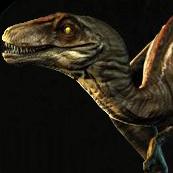 Novaraptor logo
