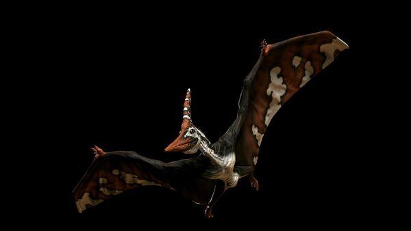 Autumn Red Pteranodon