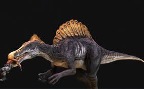Spino pic 1