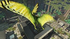 Tupandactylus pic 3