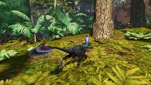 Oviraptor pic 3
