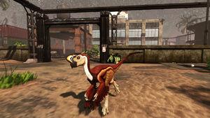 Oviraptor pic 2