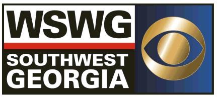 File:The WSWG Logo.jpg