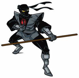 Foot ninja